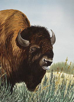 Boss Bull by Bud Bullivant