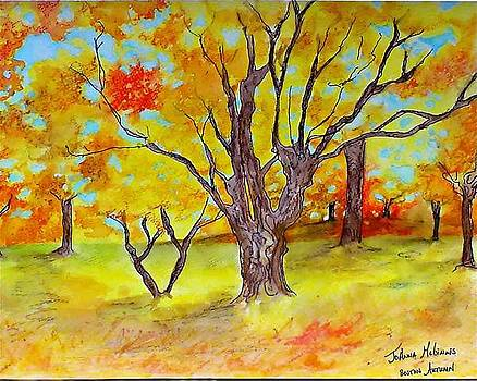 Boston Autumn by Jo Anna McGinnis