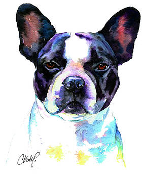 Christy  Freeman - Boston Bulldog Portrait