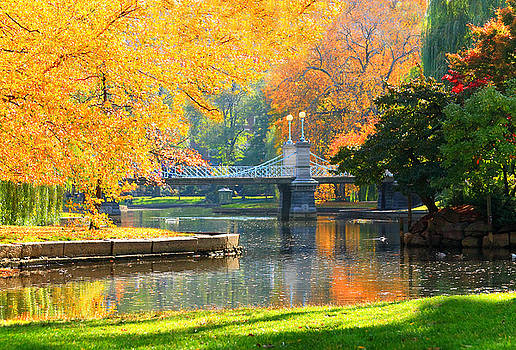 Fall Season at Boston Common by Louis Rivera