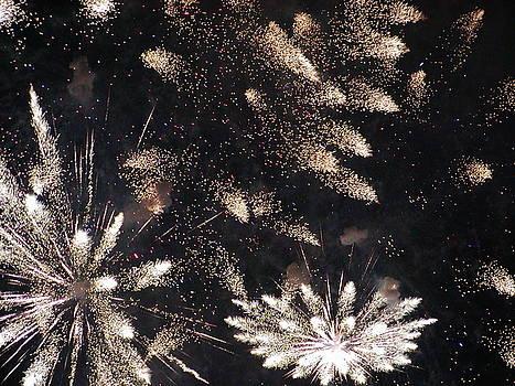 Boston Fireworks by Sasha  Grebenyuk