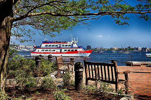 Boston Harbor View by Tricia Marchlik