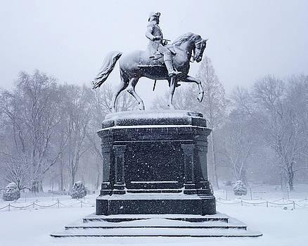 Toby McGuire - Boston Public Garden Statue Covered in Snow Boston MA
