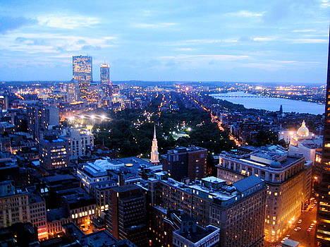 Boston Skyline at Dusk by Maria Mills