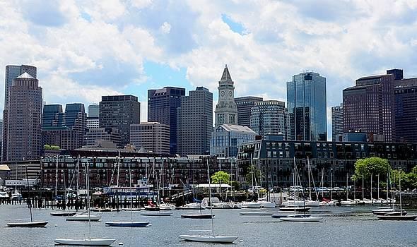 Corinne Rhode - Boston Skyline