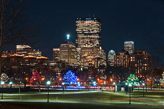Joann Vitali - Boston Skyline from Boston Common