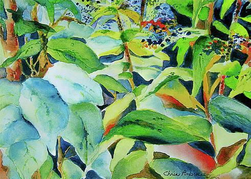 Botanical by Christine Ambrose
