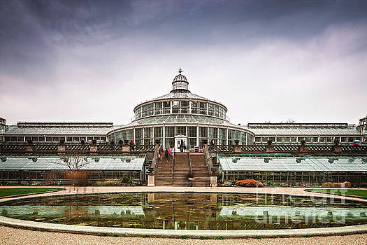 Sophie McAulay - Botanical gardens reflection