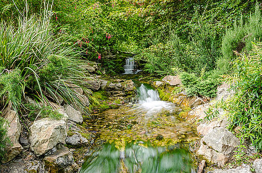 Martina Fagan - Botanical Water