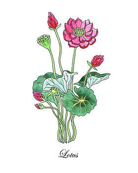 Botanical Watercolor Of Lotus Flower by Irina Sztukowski