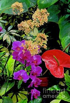 Botanicals by Craig Wood