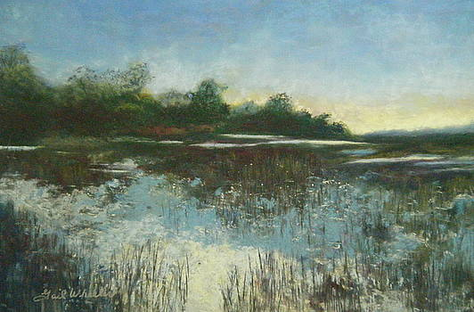 Botany Bay Marsh I by Gail Wheeler