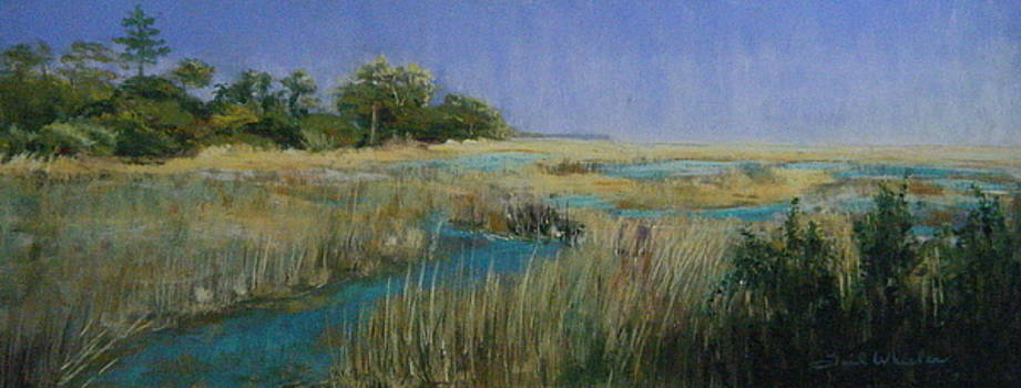 Botany Bay Marsh II by Gail Wheeler
