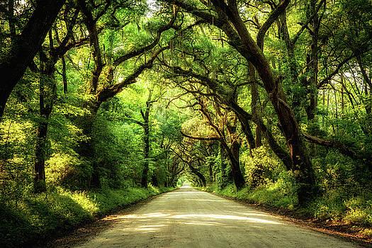 Botany Bay Road by Jason Roberts