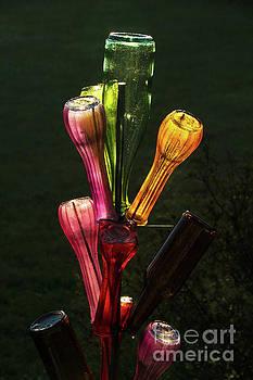 bottle Tree in Bloom by David Frederick