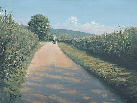 Bottom of Path Hill by Richard Picton