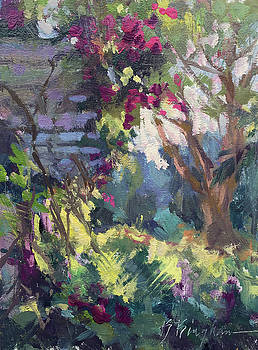 Bougainvilla Arbor by Bruce Bingham