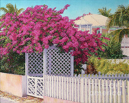 Bougainvillea Crown by Eddie Minnis