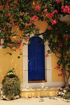 Bougainvillea growing around the door by Deborah Benbrook