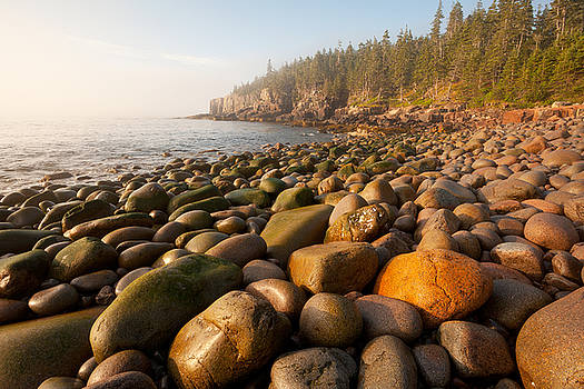 Boulder Beach Acadia National Park Maine by Binh Ly