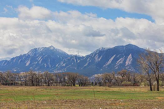 James BO Insogna - Boulder Colorado Prairie Dog View