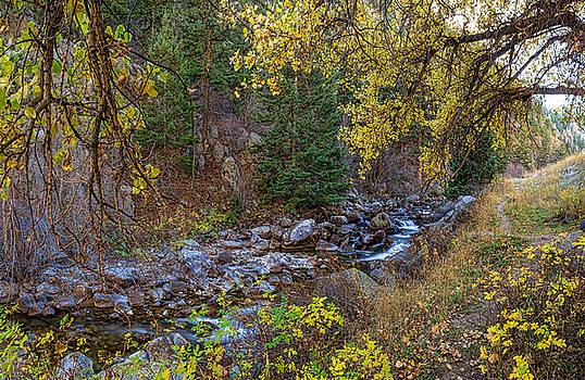 James BO  Insogna - Boulder Creek Autumn View
