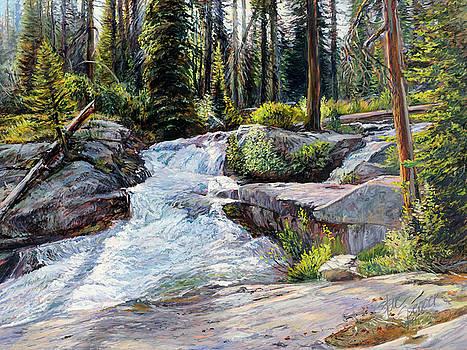 Boulder Creek Falls by Steve Spencer
