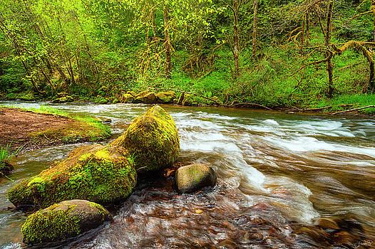 Boulders in Scoggins Creek by Dee Browning