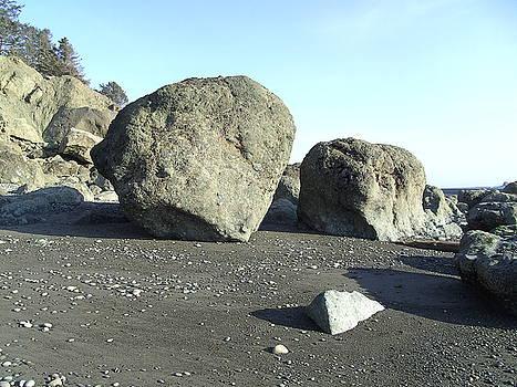 Tammy Bullard - Boulders on The Beach