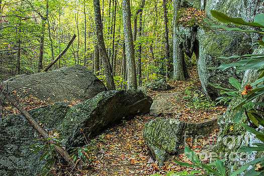 Barbara Bowen - Boulders on the Bear Hair Gap Trail