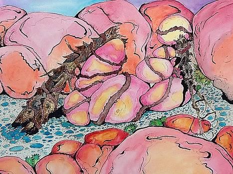 Bound Rocks  by Robert Hilger