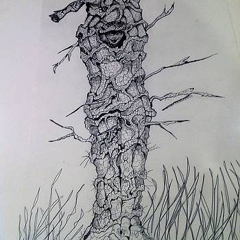 Bound Woman Of The Old Tree by Robert Hilger