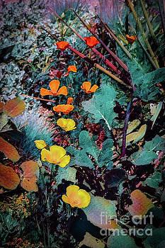 Bouquet by Jon Burch Photography