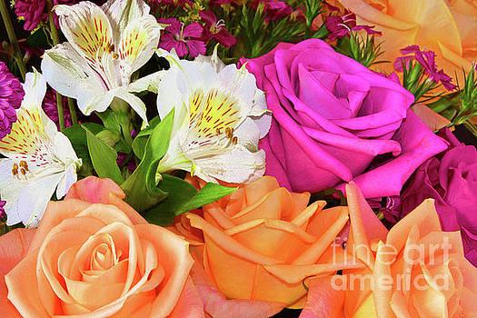 Regina Geoghan - Bouquet of Colors