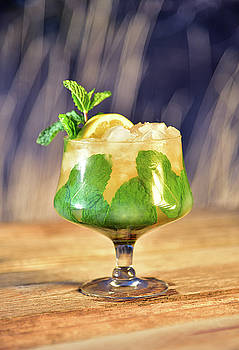 Bourbon and Mint Cocktail by Eneida Gastal-Keith