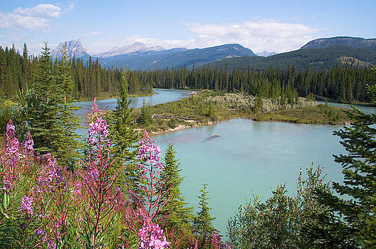 Bow River Banff National Park Canada by Linda McRae