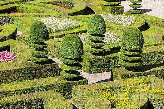 Heiko Koehrer-Wagner - Box Hedges Garden