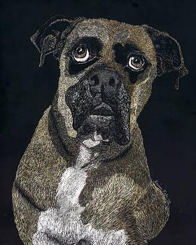 Boxer Portrait by Jessica Kale