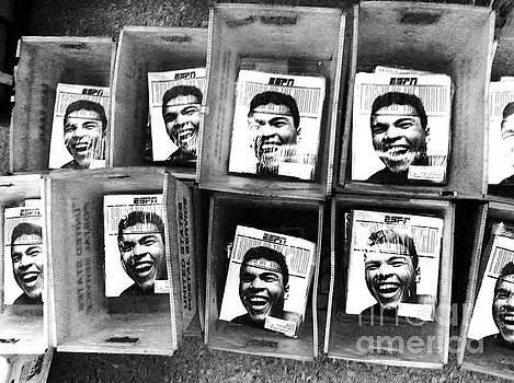 Boxers Boxes by WaLdEmAr BoRrErO