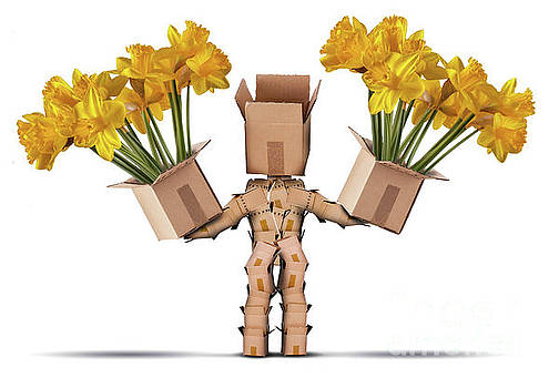 Boxman character holding two boxes of flower by Simon Bratt Photography LRPS