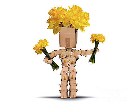 Boxman holding bunches of daffodils by Simon Bratt Photography LRPS