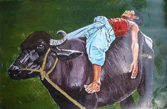 Boy on buffalo by Sreenivasa ram Makineedi