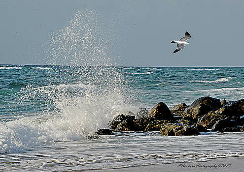 Boynton Beach High Tide by Allan Einhorn