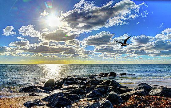 Boynton Beach Sunrise by Allan Einhorn