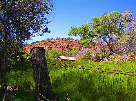 Boynton Canyon Arizona by Jen White