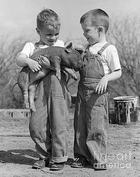 B Taylor ClassicStock - Boys Holding Piglet, C.1950s