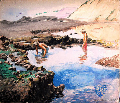 Boys in Pacific Tidepool by Mark Plimsoll