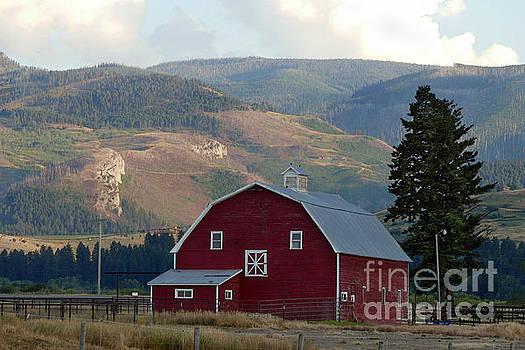 Bozeman, Montana, Barn by Catherine Sherman
