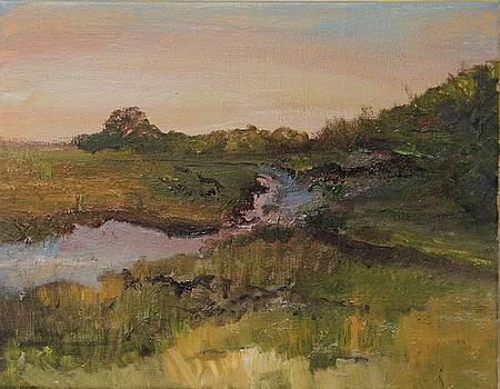 Brady Island by Michael Helfen