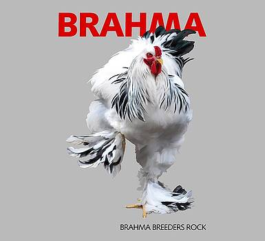 Brahma Breeders Rock RED by Sigrid Van Dort